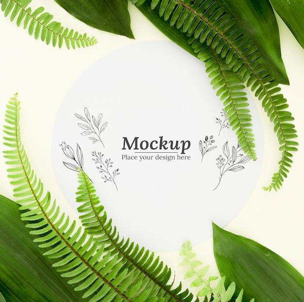 Плоская композиция из зеленых листьев с макетом