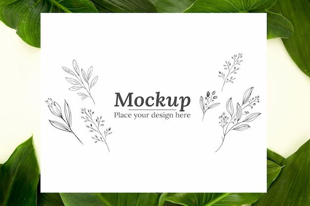 Ассорти из плоских зеленых листьев с макетом