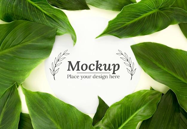 モックアップとフラットレイ緑の葉の品揃え