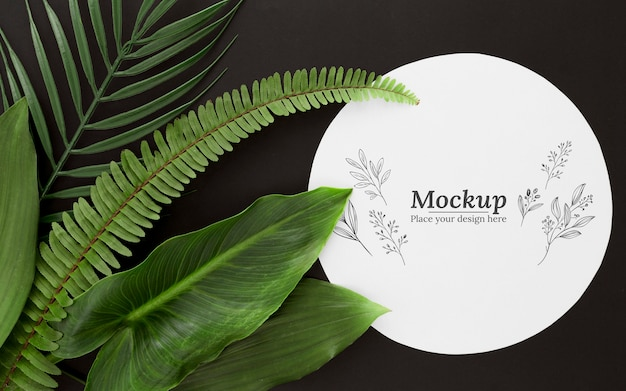 モックアップとフラットレイ緑の葉