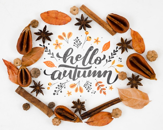 Flat lay hello autumn surrounded by dry leaves