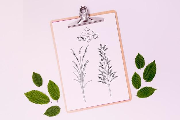 Плоский макет концепции листьев