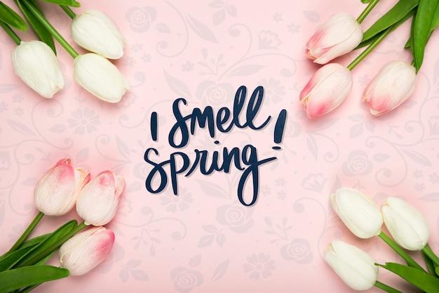 봄 튤립의 평평한 누워