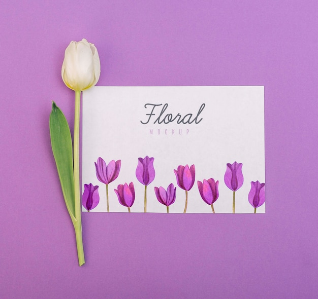 Tulipano bianco disteso piatto accanto al mockup di carte