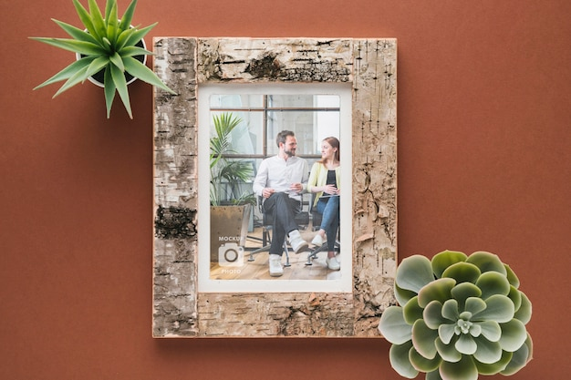 Flat lay of wooden frame with succulents