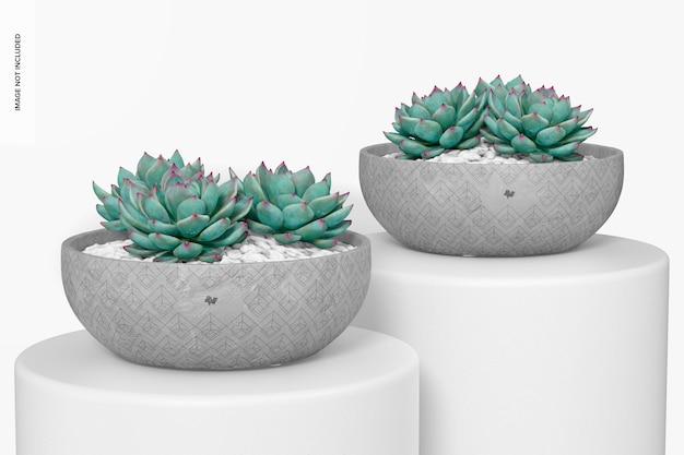 Flat round cement pots mockup