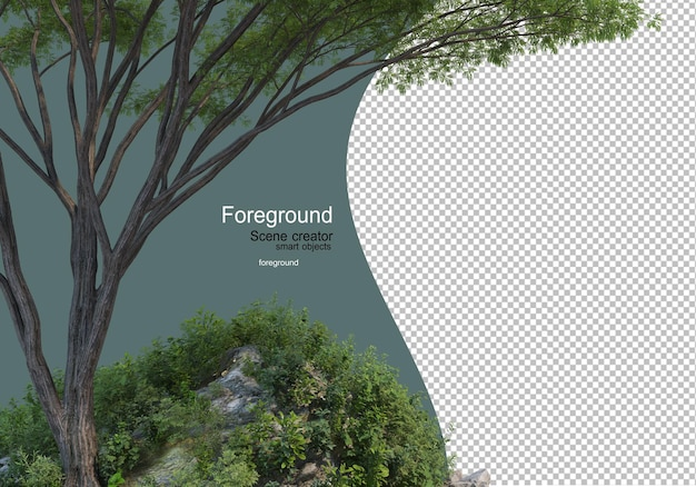 앞 나무가 있는 화원과 관목