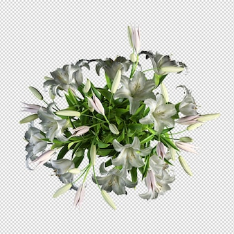 고립 된 3d 렌더링에서 꽃 모형