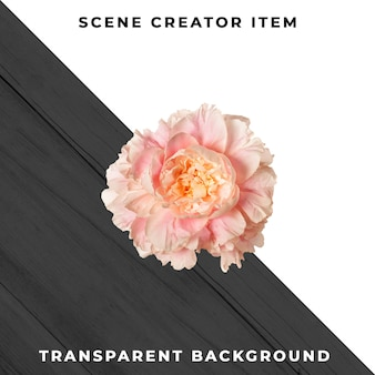 Flower object transparent psd