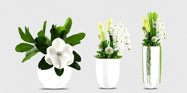Flowers plant in vase in 3d rendering isolated