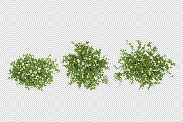 고립 된 3d 렌더링에서 꽃 식물 모형