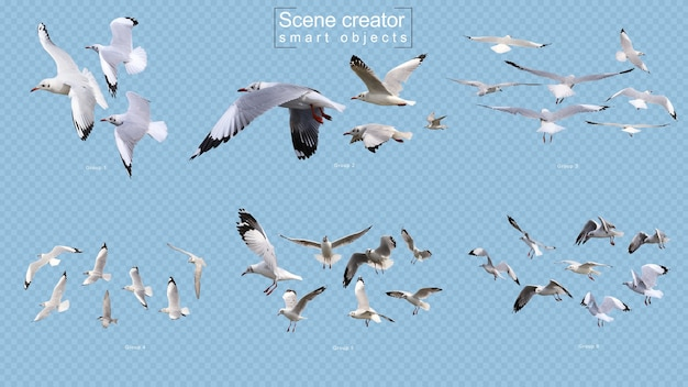 Flying birds scene creator isolated