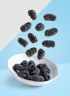 Flying blackberries in white plate, isolated with clipping path