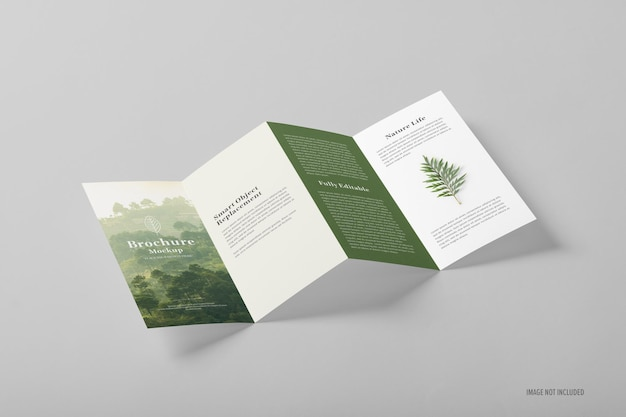 Сложенный шаблон макета брошюры