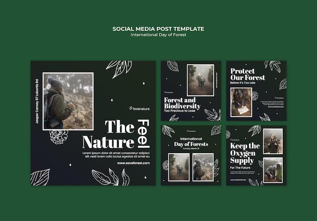 Сообщения в социальных сетях о дне леса