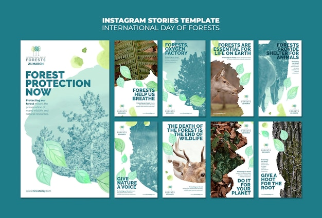 Forests day instagram stories template with photo