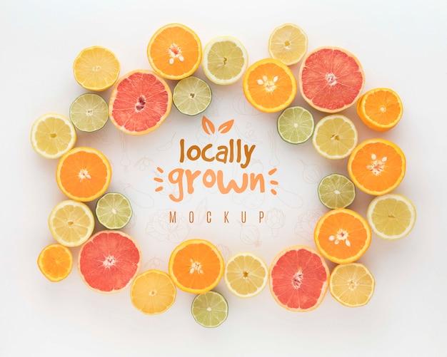 柑橘系の果物のフレーム