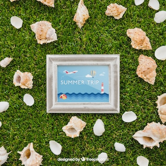 Frame and shells on grass