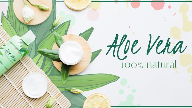 Fresh aloe vera with products