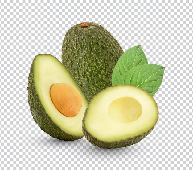 Fresh avocado with leaves isolated design