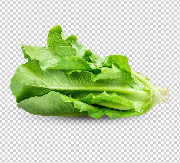 Свежий салат изолированный premium psd