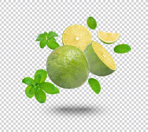 Fresh lime with mint leaves isolated