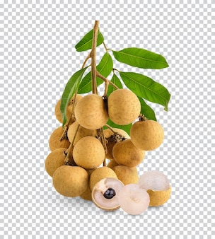 Fresh longan with leaf isolated premium psd
