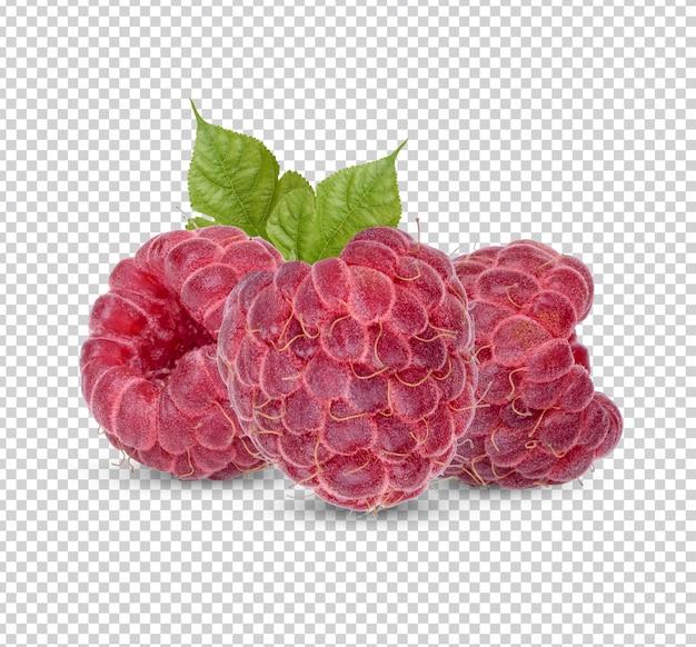 葉が分離されたプレミアムpsdと新鮮なラズベリー
