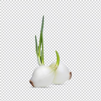 Свежий сырой очищенный белый лук, изолированные на белом фоне. с обтравочным контуром премиум psd.