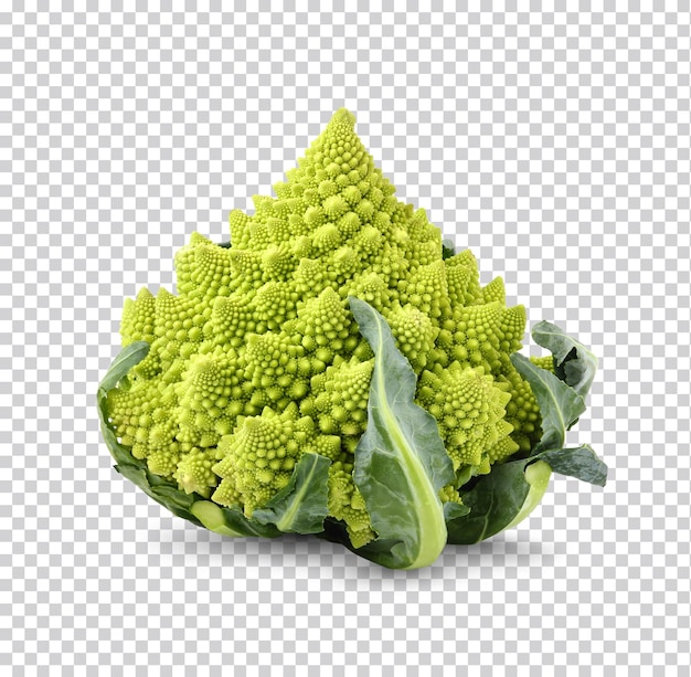 Fresh romanesco broccoli isolated