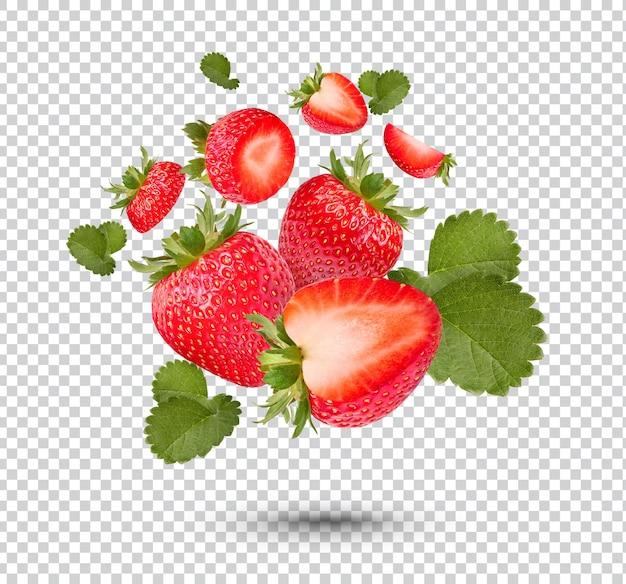 고립 된 잎을 가진 신선한 딸기