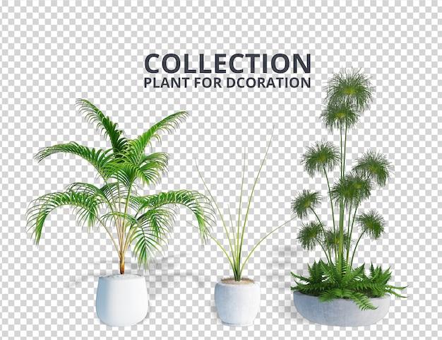 Вид спереди растение в горшке 3d-рендеринга