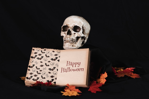 Front view of a skull with a book