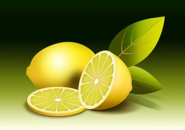 Fruit illustration  fresh lemon psd