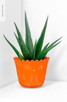 Стеклянный горшок для растений, вид спереди
