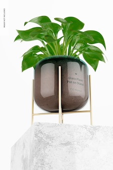 Glass plant pot on stand mockup, low angle view