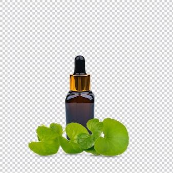 흰색 배경에 분리된 신선한 잎이 있는 호박색 병에 담긴 고투 콜라 센텔라 아시아티카 추출물 프리미엄 psd.