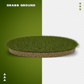 Grass ground in 3d rendering isolated