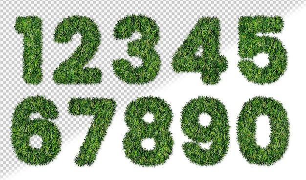 Set di numeri di erba