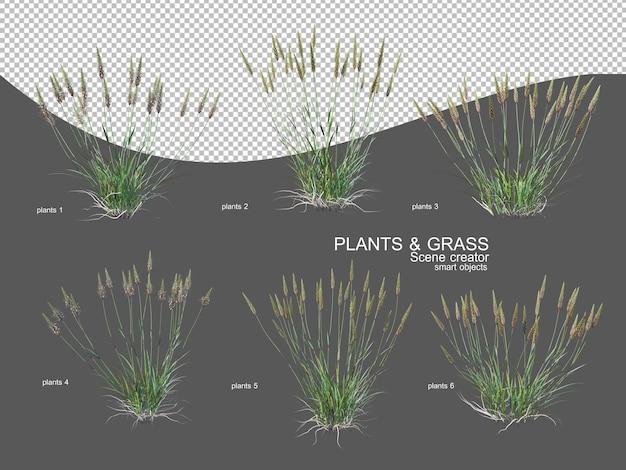 다양한 크기와 유형의 잔디