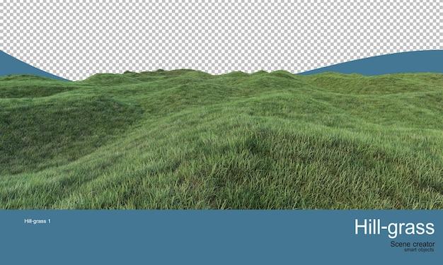 다양한 수준의 잔디 언덕