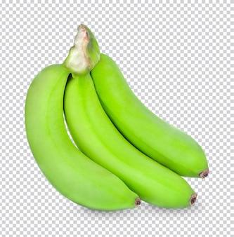 녹색 바나나 절연 프리미엄 psd