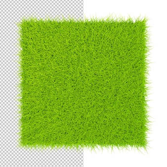 녹색 잔디 광장 카펫 고립 된 그림