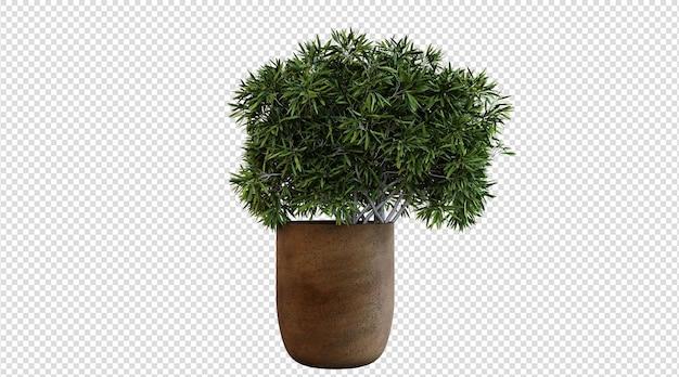 갈색 냄비 식물 3d 렌더링의 녹색 식물