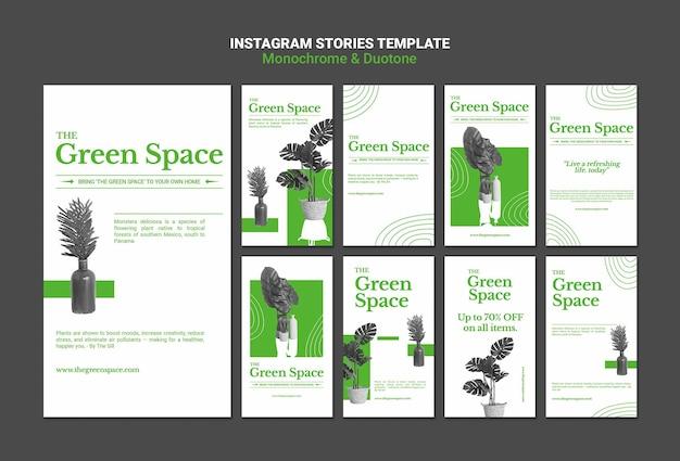 Modello di storie sui social media dello spazio verde