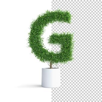 Зеленое дерево алфавит буква g