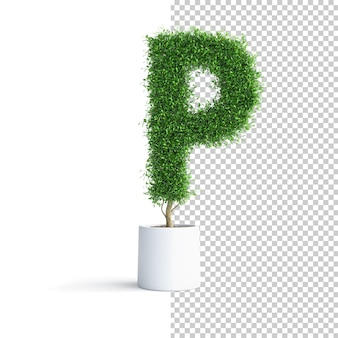 緑の木のアルファベット文字p