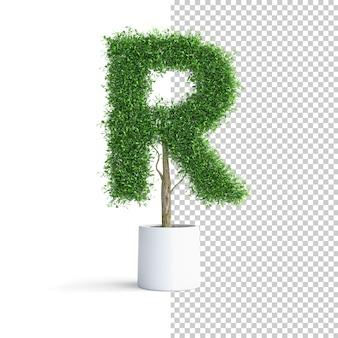 緑の木のアルファベット文字r