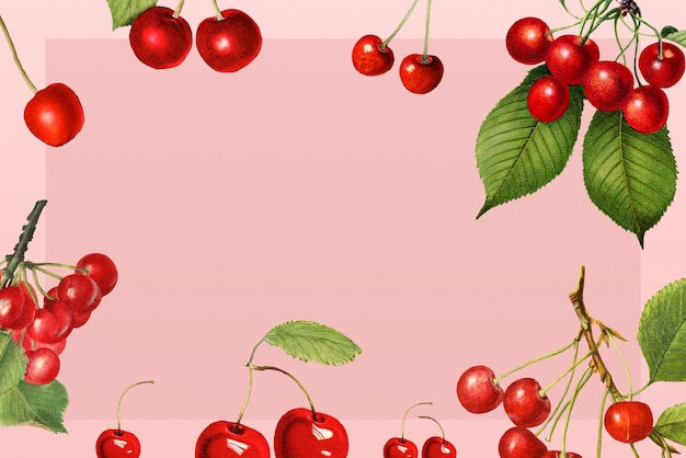 Hand drawn natural fresh red cherry frame on pink background