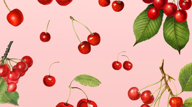 Hand drawn natural fresh red cherry on pink background illustration